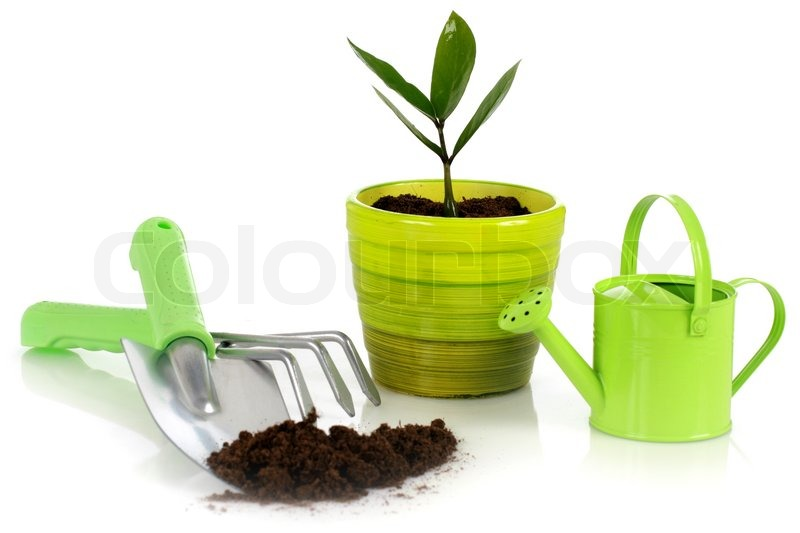 Plant with garden tools stock photo colourbox for Gardening tools used in planting