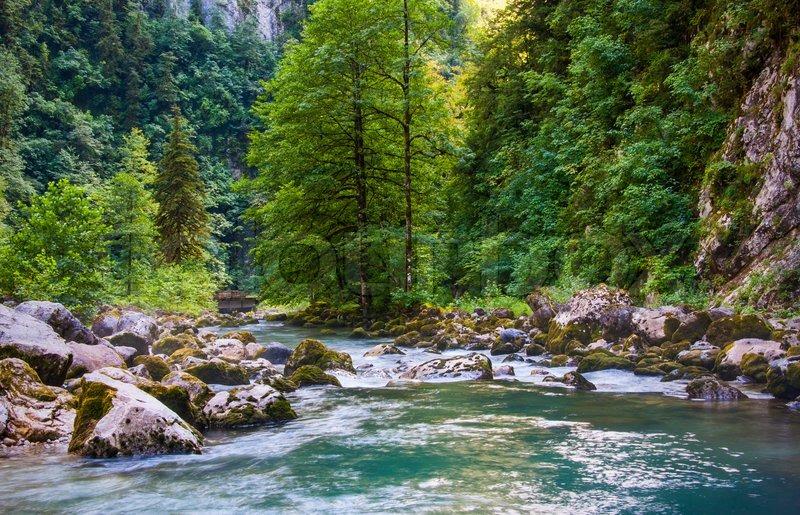 The Holy Mountain Stream