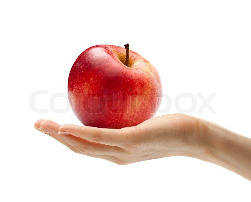 Apple Fruit Anatomy
