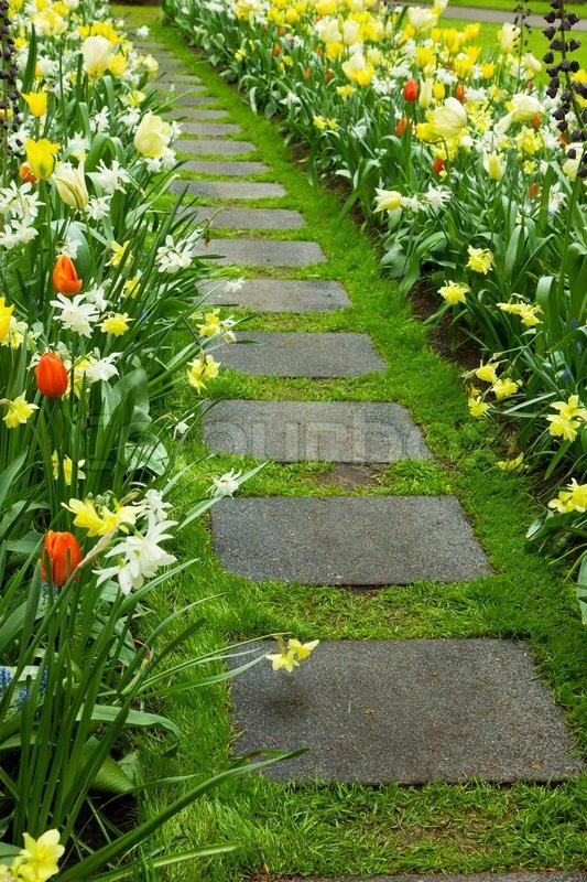 Walk In Garden Box: Stone Walk Way Winding In Garden