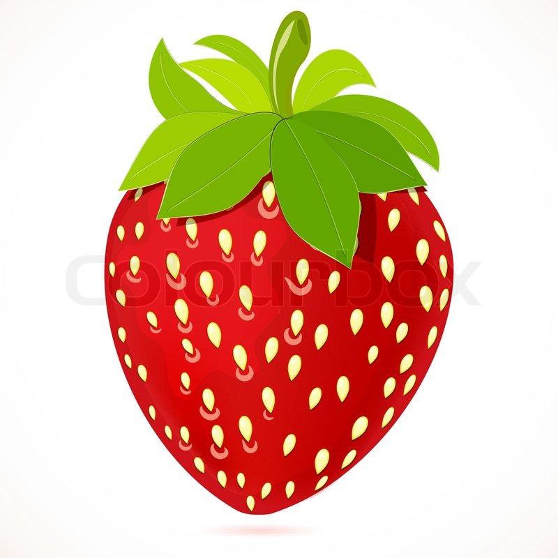 strawberry vector illustration stock vector colourbox rh colourbox com strawberry vector freepik strawberry vector background