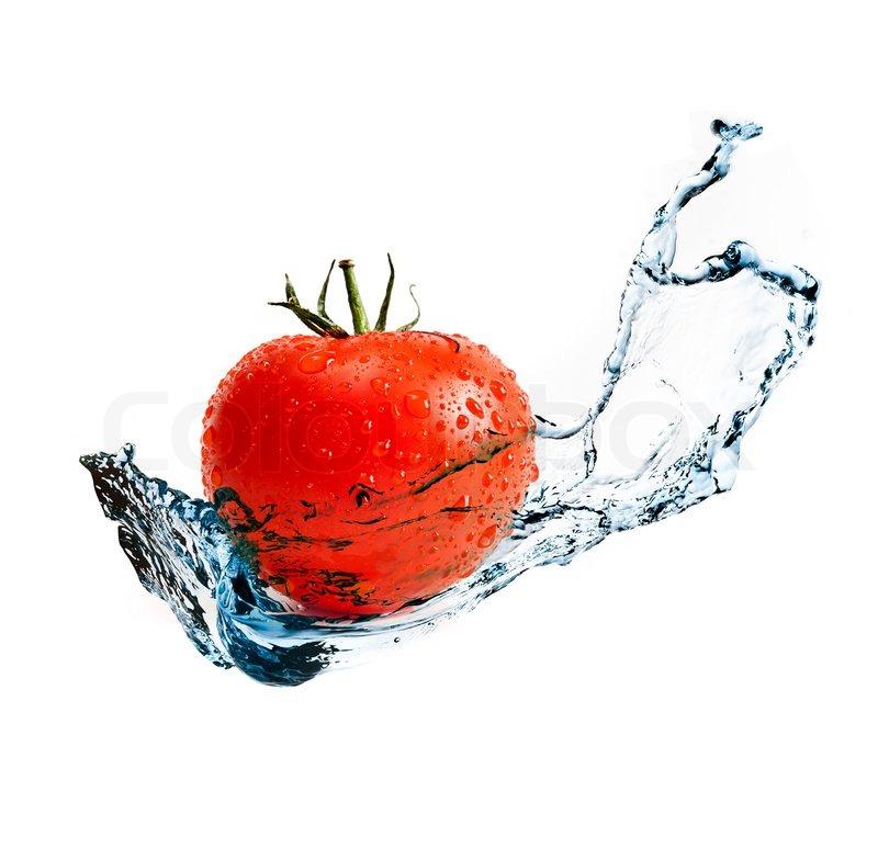 red ripe tomato with water splash stock photo colourbox