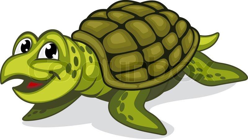 green turtle clip art - photo #25