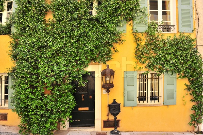Old house wall with door windows and plants stock photo for Classic house plants