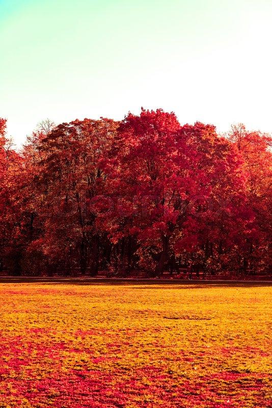 Seasonal Travel Retro Backdrop And Stock Image Colourbox