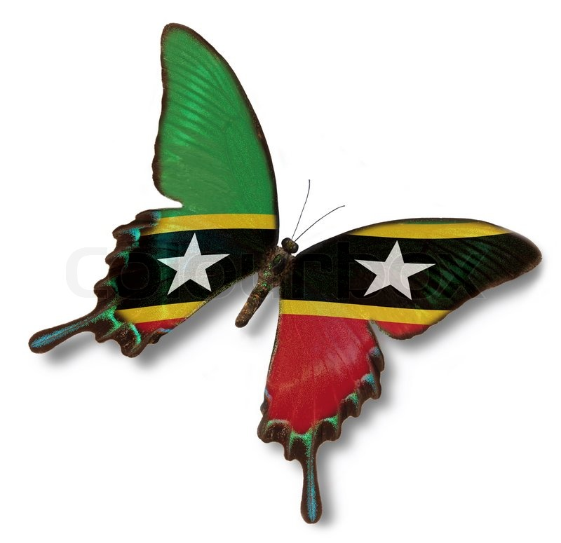 Who Flies To St Kitts: Federation Of Saint Kitts And Nevis Flag On Butterfly