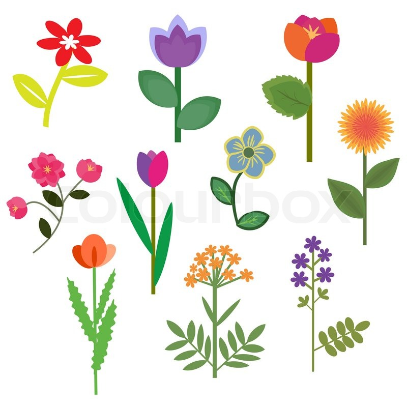 decorative flowers set with foliage vector - Decorative Flowers
