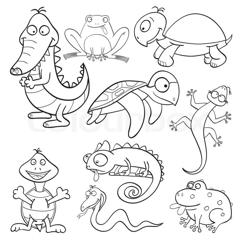 Coloring book with reptiles and amphibians | Stock Vector | Colourbox