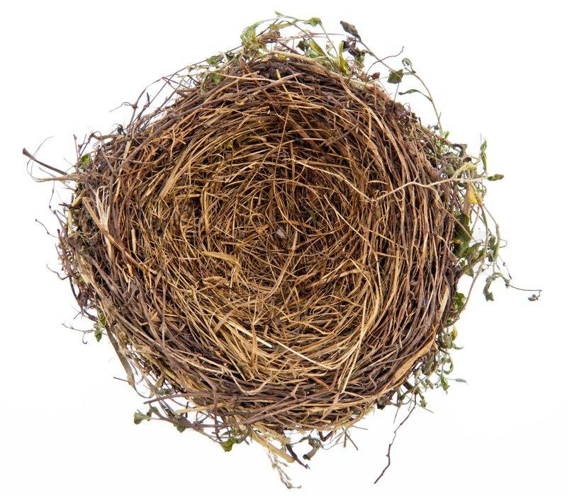empty nest Episode recap empty nest on tvcom watch empty nest episodes, get episode information, recaps and more.