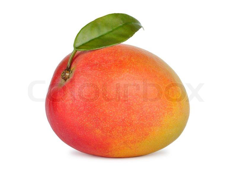 Buy Stock Photos of Mango | Colourbox