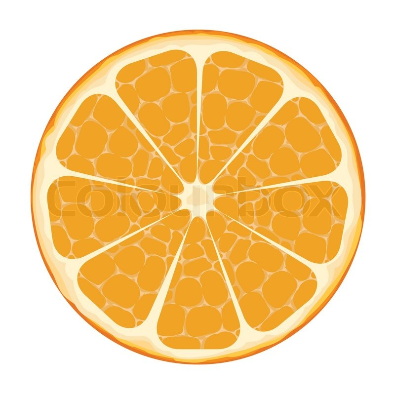 Orange Slice Vector Art | Stock vector | Colourbox