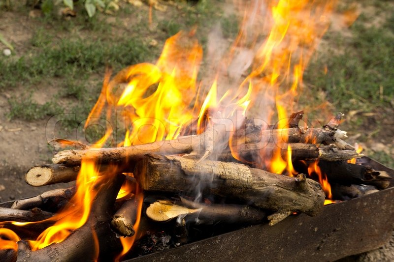 Fire from burning wood | Stock Photo | Colourbox