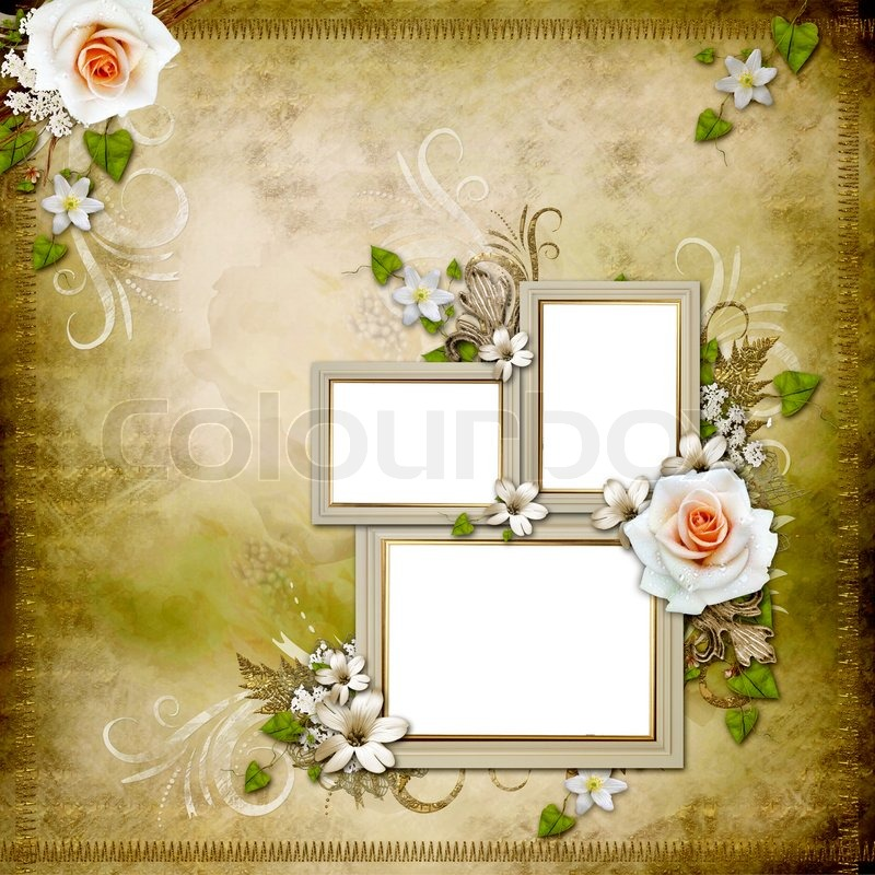 Vintage background with 3 frames and roses | Stock Photo | Colourbox