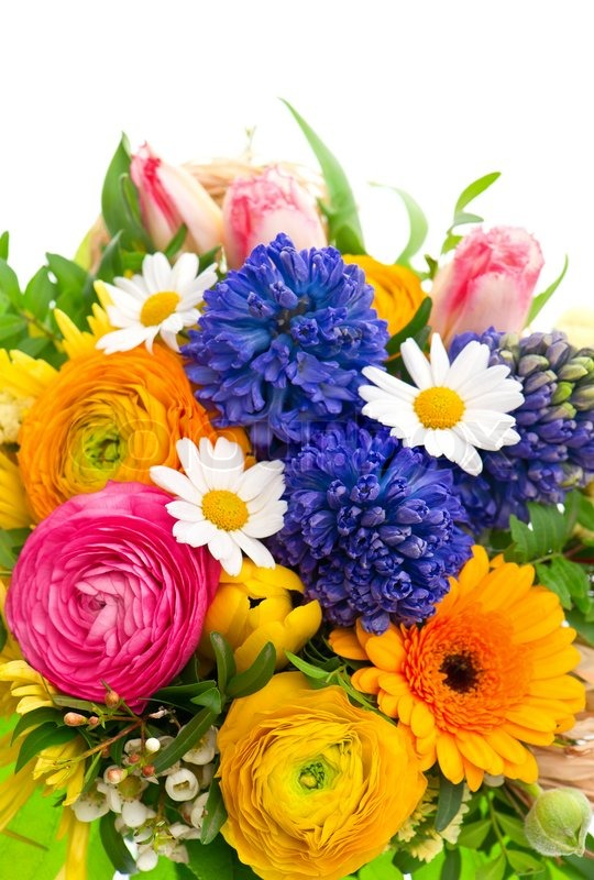 Beautiful bouquet of colorful spring flowers   Stock Photo   Colourbox