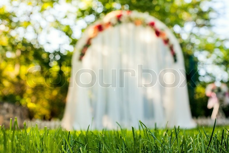 Wedding Arch on the grass | Stock Photo