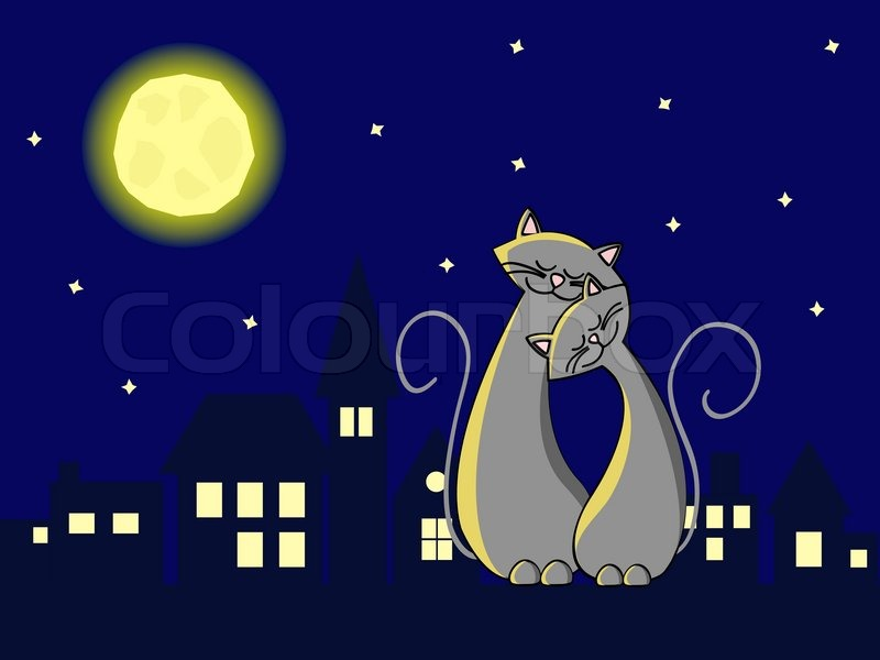 two grey cats in love sitting at the roof at night stock