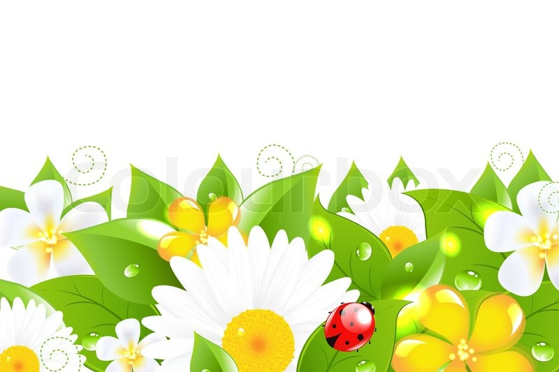 Flower Border With Ladybug, Isolated On White Background, Vector