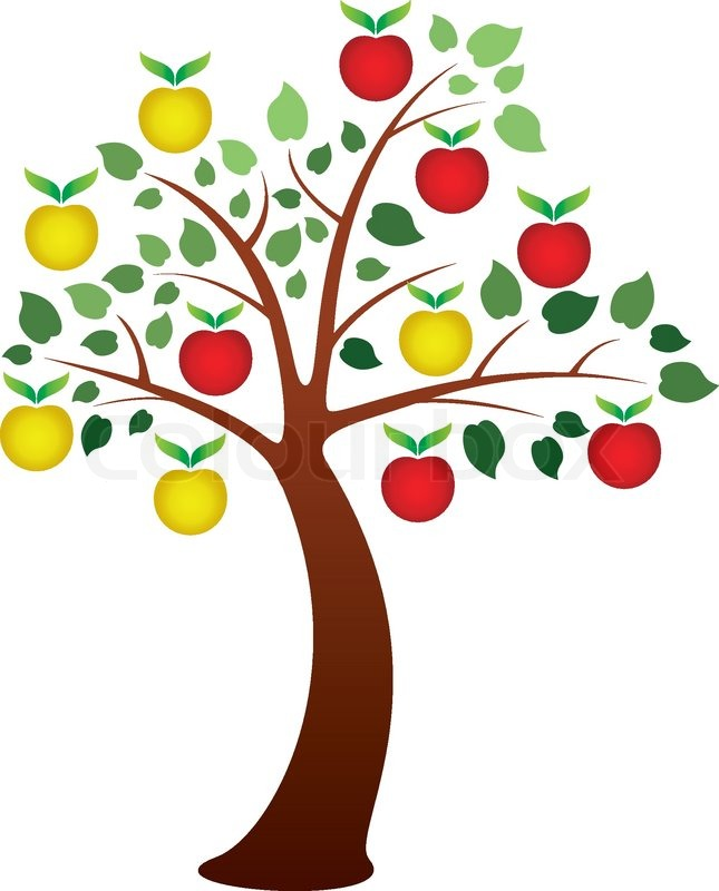 Vector apple tree with fruits | Vector | Colourbox