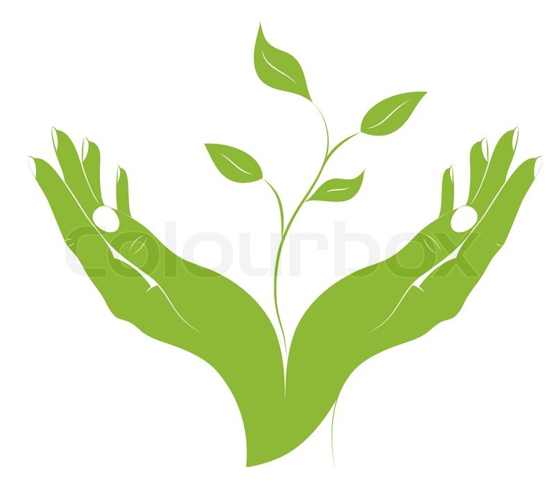 the silhouette of young plant in female hands stock vector colourbox rh colourbox com plant vector dynamics plant vector dynamics