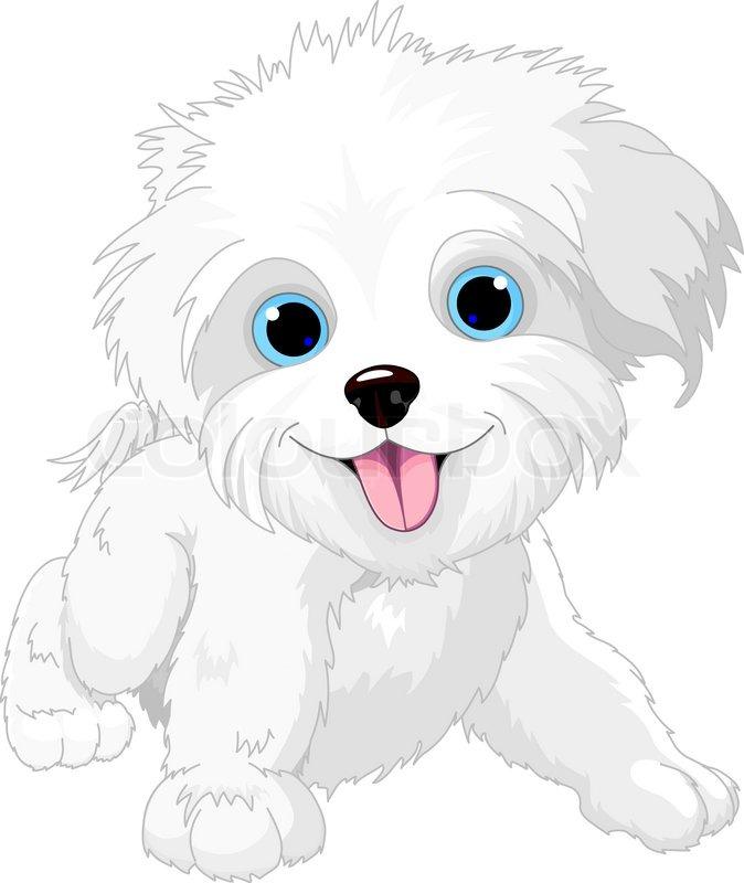 Playful lap-dog | Stock Vector | Colourbox