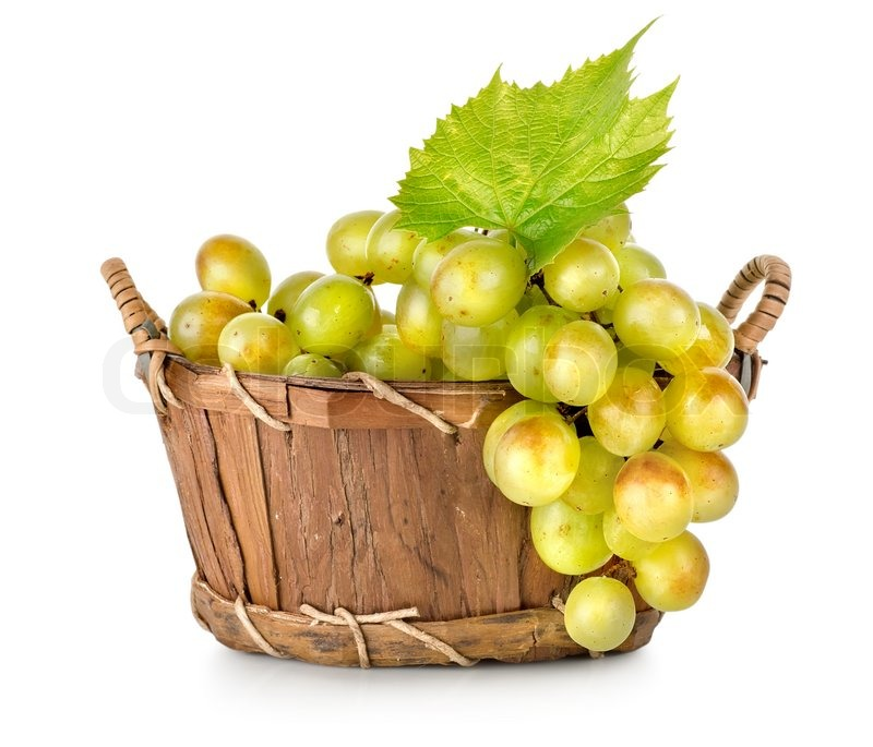 Basket Weaving Grapevines : Grapes in a wooden basket isolated stock photo colourbox