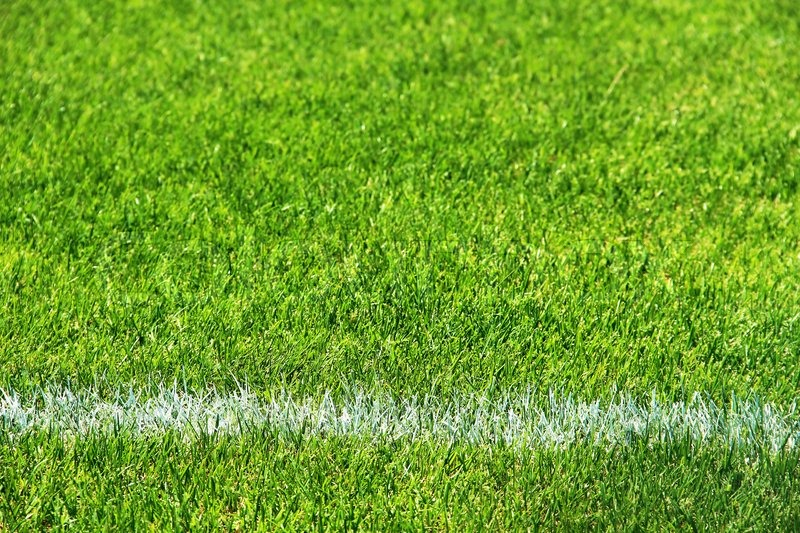 green grass football field clipart white line on the green grass of football field stock photo colourbox