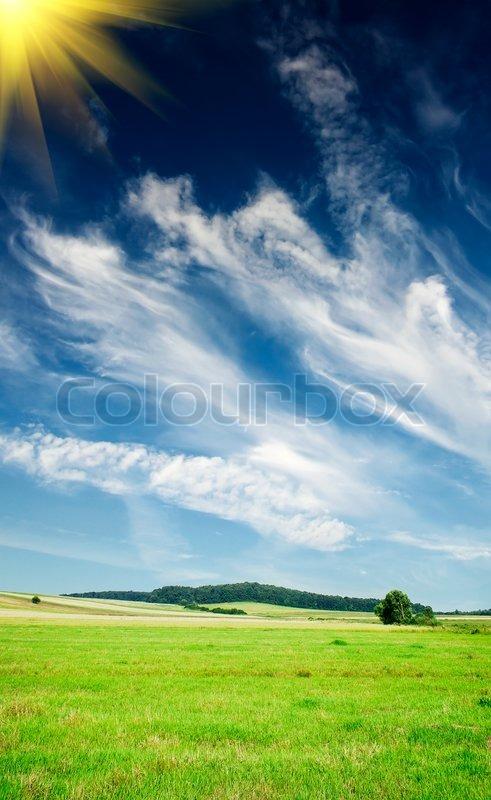 Nice summer landscape, stock photo