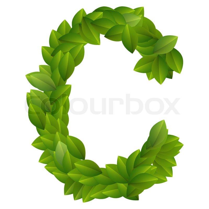Letter C of green leaves alphabet | Stock Vector | Colourbox