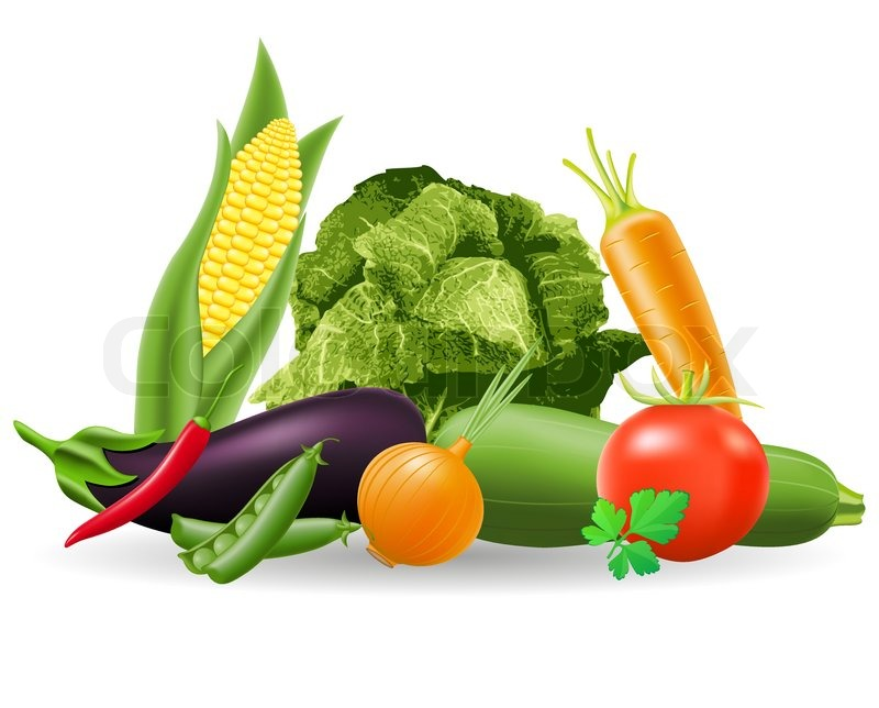 free vector vegetables clipart - photo #50