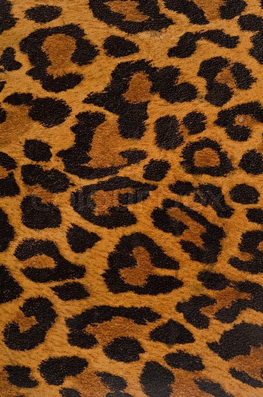 Leopard print pattern stock photo colourbox thecheapjerseys Gallery