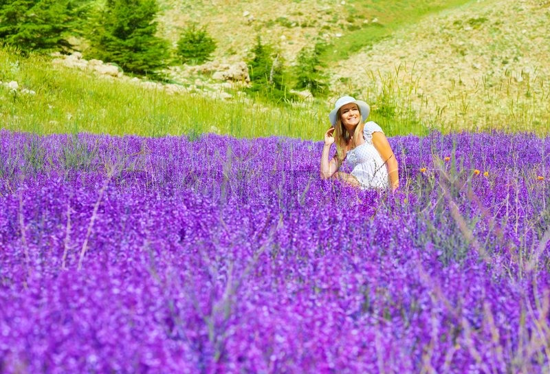 Beautiful purple flowers meadow hot girls wallpaper for Cheerful nature