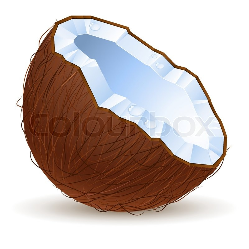 how to cut a coconut in half perfectly