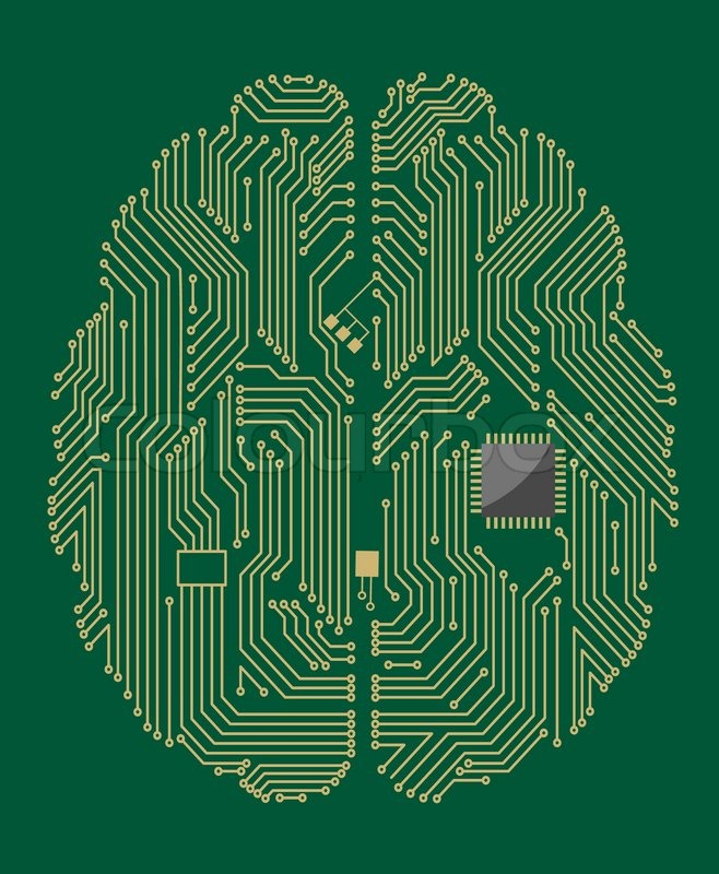 Motherboard Brain With Computer Chip Stock Vector