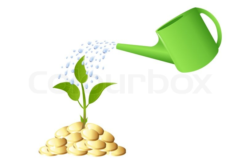 Green Young Plant With Money And Watering Can Stock
