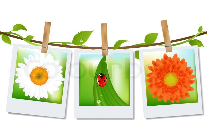 photo frames with nature image stock photo colourbox - Nature Photo Frames