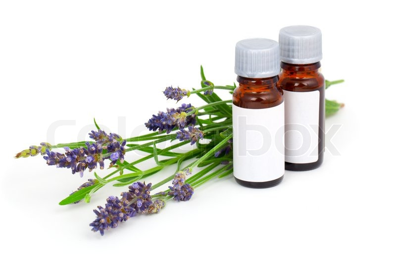 Aromatherapy Lavender Oil And Lavender Flower Isolated On