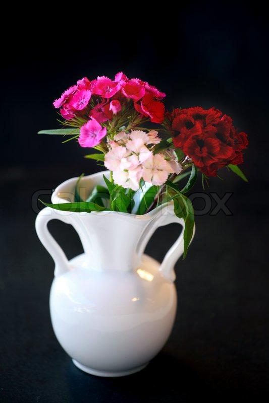 White Vase With Ruddy Flowers On Black Background Stock