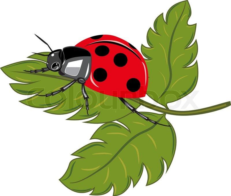 green ladybug clipart - photo #20