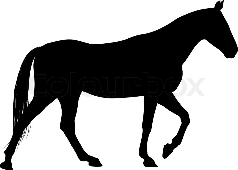 vector horse stock vector colourbox rh colourbox com vector horse head silhouette vector horseshoe nails