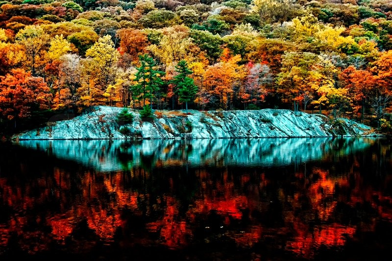 Beautiful Fall Colors Reflecting In The Forest Lake