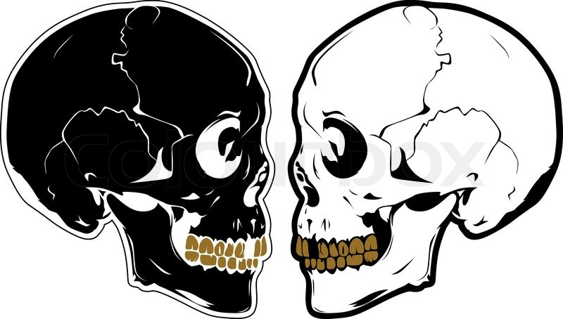 vector skulls in profile stock vector colourbox rh colourbox com vector skull and crossbones vector skull free