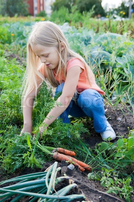 A Young Girl Working On The Garden Stock Photo Colourbox