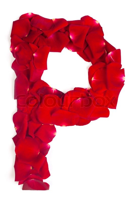 Letter P Made From Red Petals Rose On White