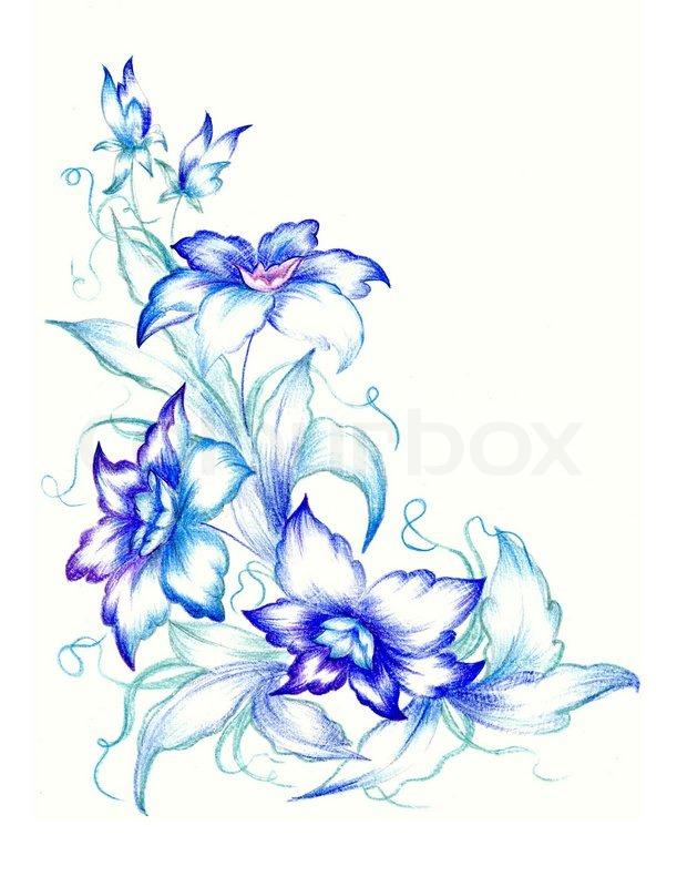 Blue flowers on white background stock photo colourbox mightylinksfo