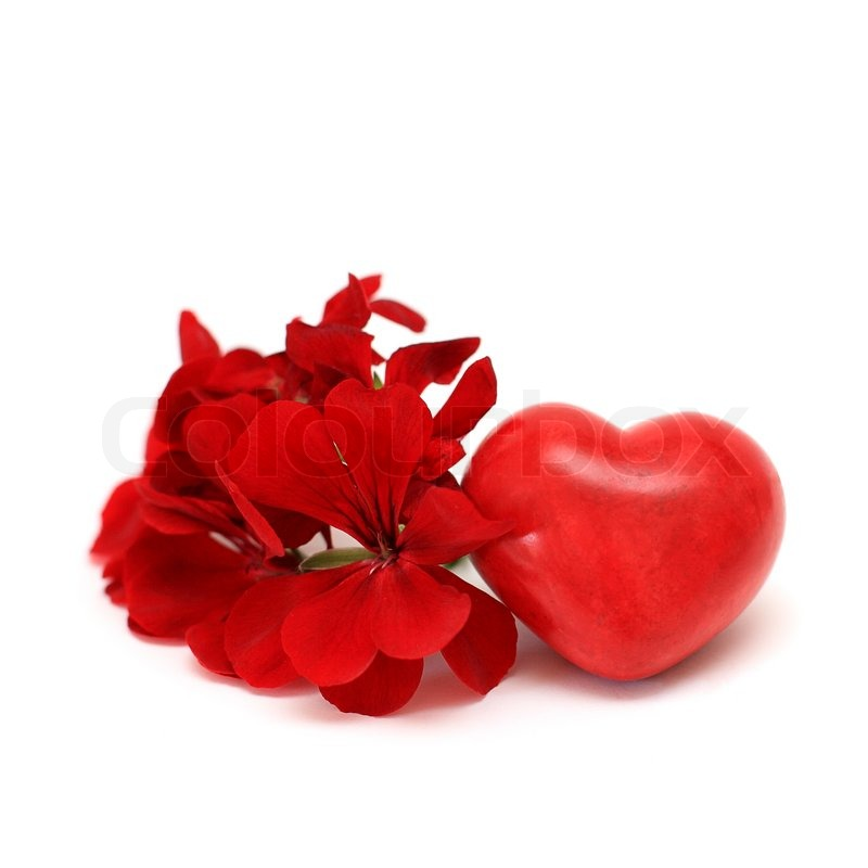 red heart and flowers on white  love concept  stock photo, Beautiful flower