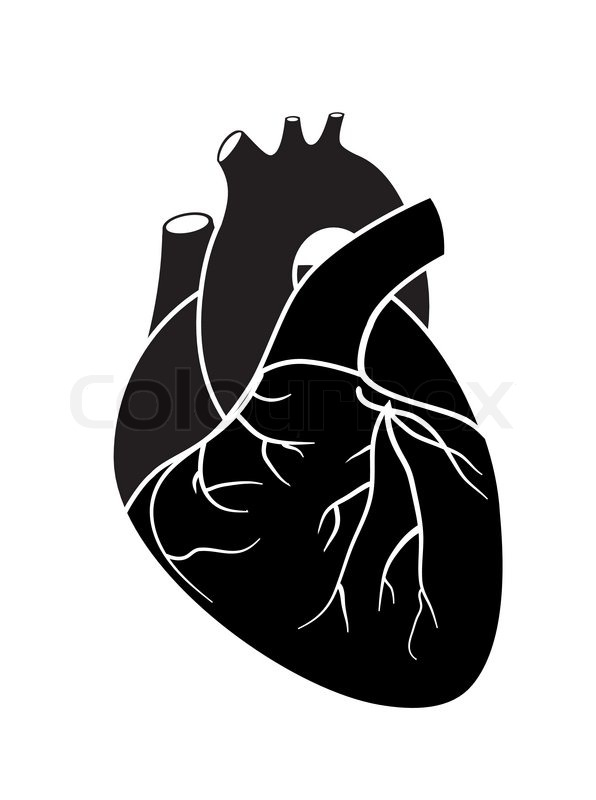 Heart | Stock Vector | Colourbox