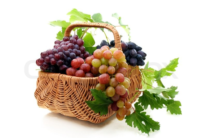 Basket Weaving Grapevines : Basket of grapes on a white background stock photo