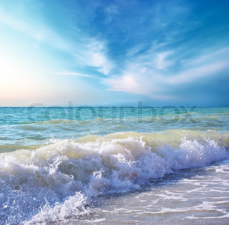 Beautiful coast of beach at day Nature composition, stock photo