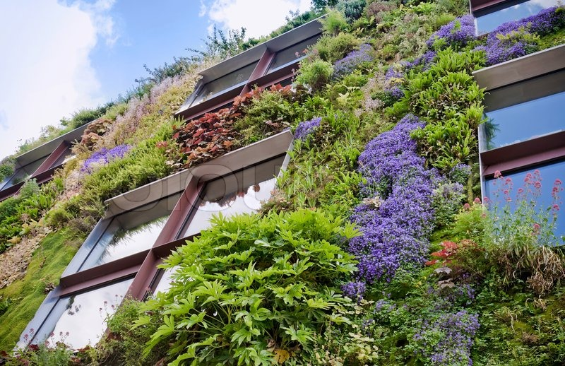 Ecological buildings facade stock photo colourbox for Jardines verticales wikipedia