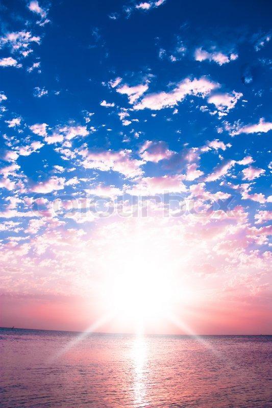 Morning Glory Pink Sunrise | Stock Photo | Colourbox